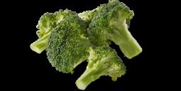 https://wellnesspetfood.com.au/dog-wellness/natural-dog-food/wellness-core-simply-shreds-dog/chicken-liver-broccoli/