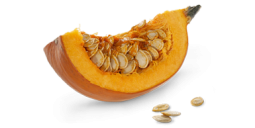 https://wellnesspetfood.com.au/dog-wellness/natural-dog-food/wellness-core-simply-shreds-dog/chicken-salmon-pumpkin/
